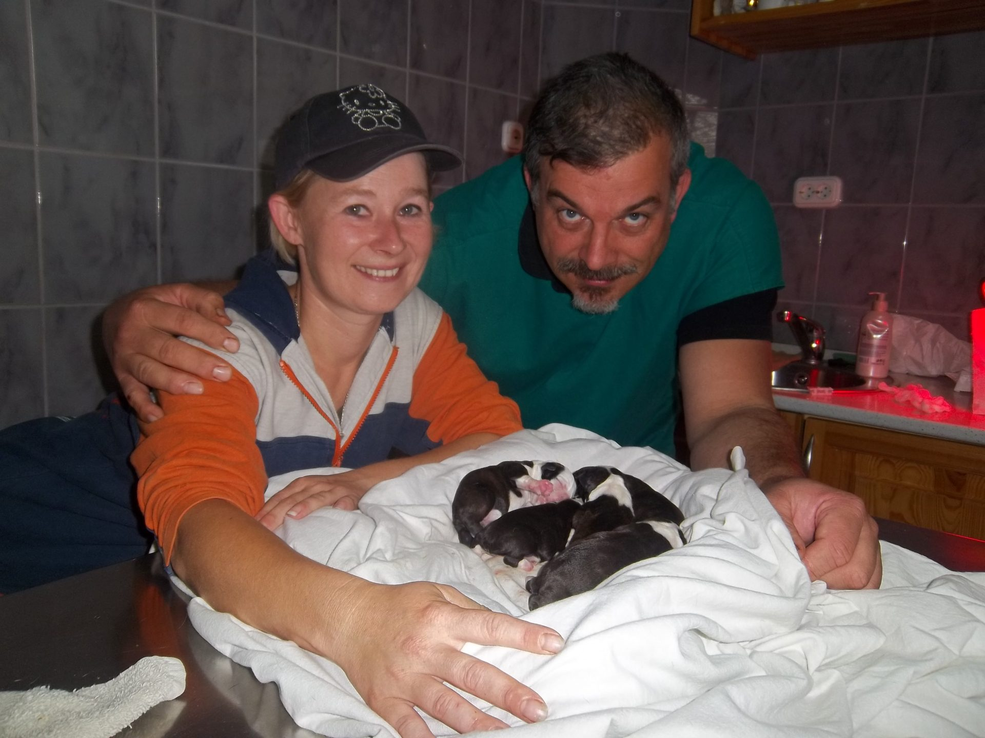 Jillyen Joysee the best és Recse Mónika the best kennel 2011